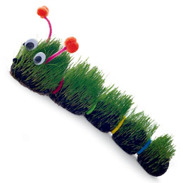 Robeez and Eric Carle's 'The Hungry Caterpillar' Pair Up