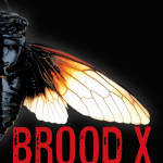 Brood X: A First hand Account of the Great Cicada Invasion